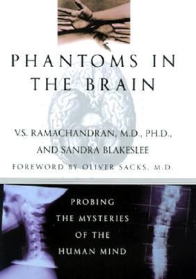 Phantoms in Brain