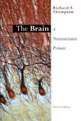 Brain A Neuroscience Primer