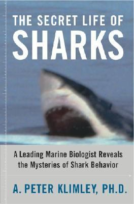 Secret Life of Sharks A Leading Marine Biologist Reveals the Mysteries of Shark Behavior