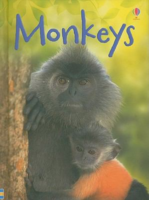 Monkeys (Usborne Beginners)