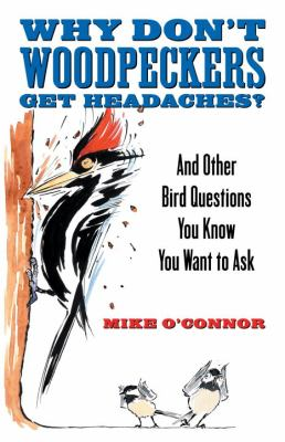 Why Don't Woodpeckers Get Headaches And Other Answers to Bird Questions You Know You Want to Ask