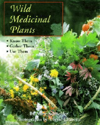 Wild Medicinal Plants What to Look For, When to Harvest, How to Use