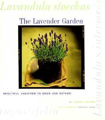Lavender Garden Beautiful Varieties to Grow and Gather