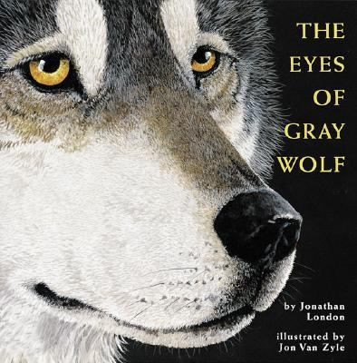Eyes of Grey Wolf