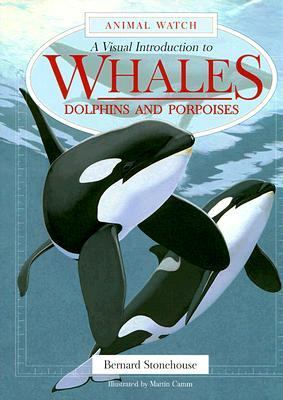 Visual Introduction to Whales, Dolphins and Porpoises