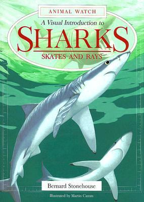 Visual Introduction to Sharks Skates and Rays