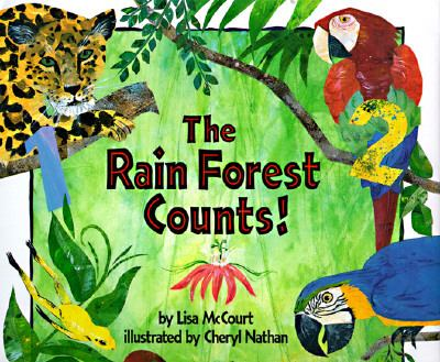 Rain Forest Counts - Lisa McCourt - Paperback