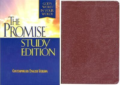 Promise God's Word in Your Words/Burgundy Bonded Leather