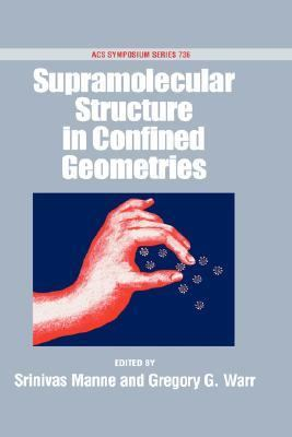 Supramolecular Structures in Confined Geometries