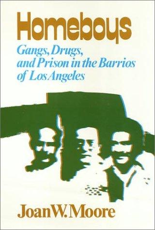Homeboys: Gangs, Drugs, and the Prison in the Barrios of Los Angeles