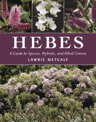 Hebes A Guide to Species, Hybrids and Allied Genera