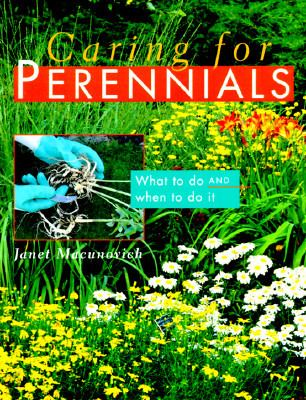 Caring for Perennials What to Do and When to Do It
