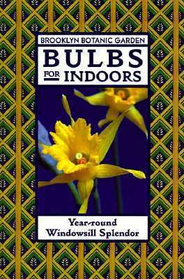 Bulbs for Indoors Year-Round Windowsill Splendor