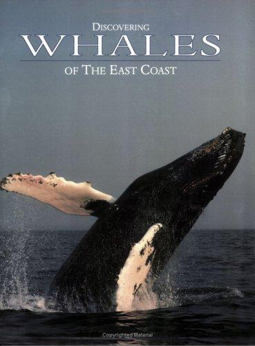 Discovering Whales of the East Coast