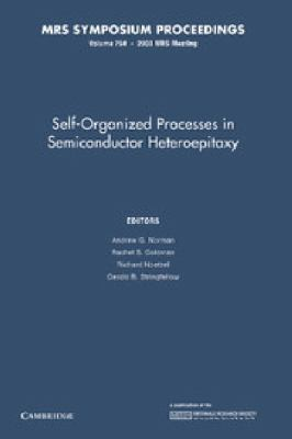 Self-Organized Processes in Semiconductor Heteroepitaxy: Volume 794