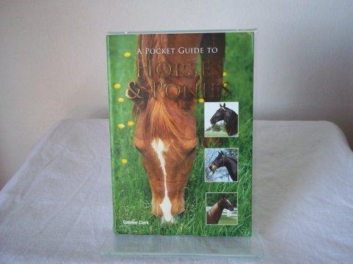 A Pocket Guide to Horses & Ponies