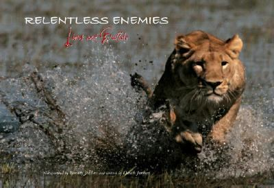 Relentless Enemies Lions And Buffalo