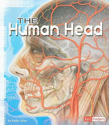 The Human Head (Anatomy Class)