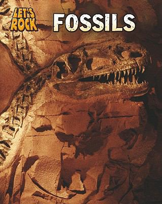 Fossils (Heinemann Infosearch: Let's Rock)