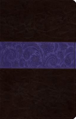 ESV Large Print Thinline Reference Bible (TruTone, Brown/Plum, Paisley Design)