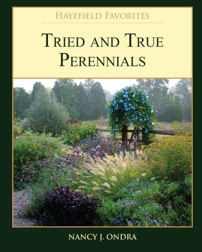 Tried and True Perennials