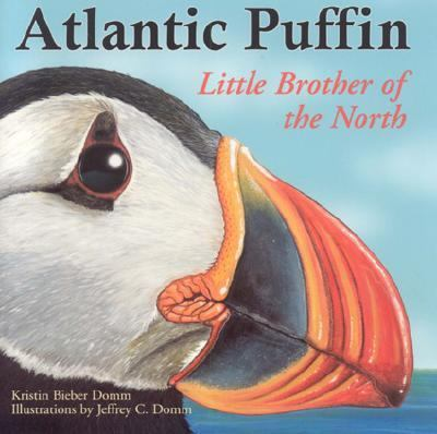 Atlantic Puffin Little Brother of the North