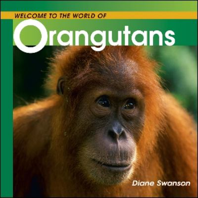 Welcome to the Whole World of Orangutans