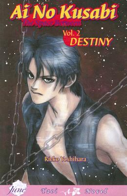 AI No Kusabi the Space between Volume 2