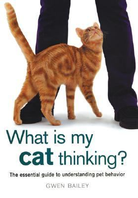 What Is My Cat Thinking? The Essential Guide to Understanding Pet Behavior