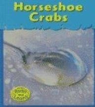 Horseshoe Crabs (Musty-Crusty Animals)