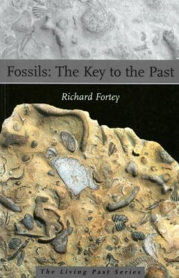 Fossils The Key to the Past
