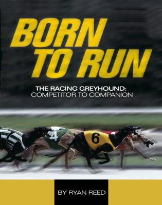Born to Run : Racing Greyhound, from Competitor to Companion