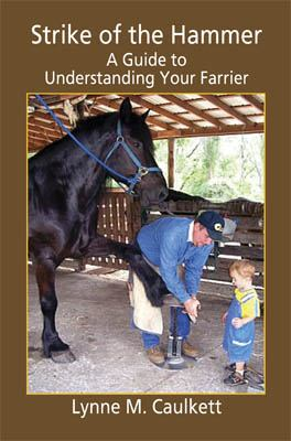 Strike Of The Hammer - A Guide To Understanding Your Farrier
