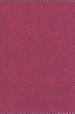 Holy Bible: King James Version, Berry, Imitation Leather, Large Print Compact Reference Bible