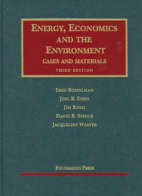 Energy, Economics and the Environment, 3D