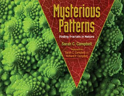 Mysterious Patterns : Finding Fractals in Nature