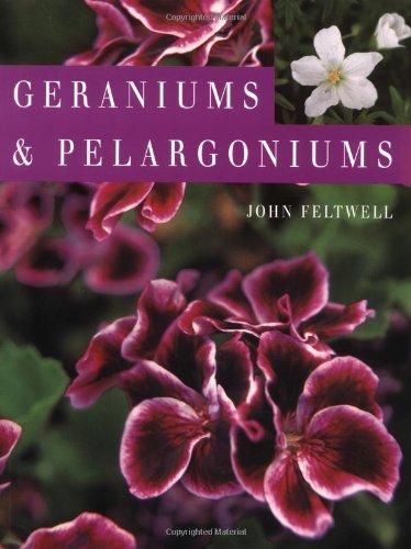 Geraniums and Pelargoniums