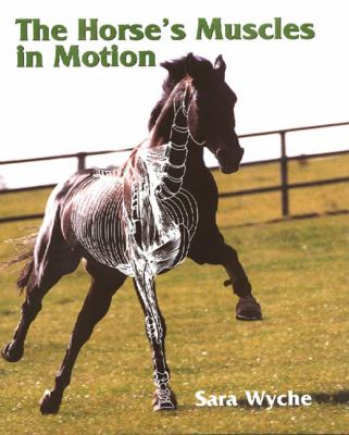 Horses Muscles in Motion