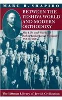 Between the Yeshiva World and Modern Orthodoxy: The Life and Works of Rabbi Jehiel Jacob Weinberg
