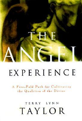 Angel Experience Simple Ways to Cultivate the Qualities of the Divine