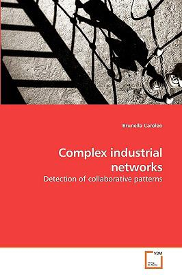 Complex industrial networks: Detection of collaborative patterns