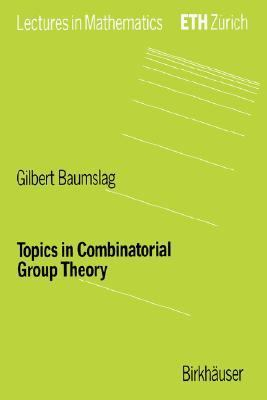 Topics in Combinatorial Theory