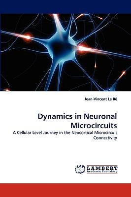 Dynamics in Neuronal Microcircuits
