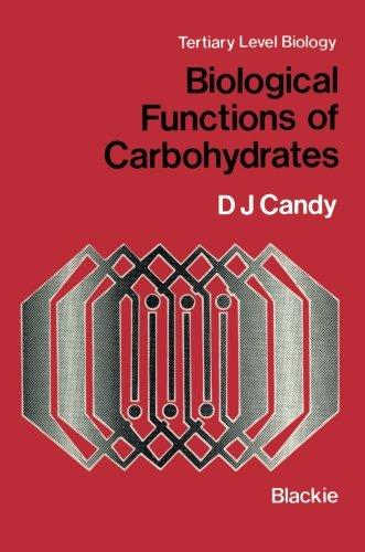 Carbohydrates: Sugar and Its Derivatives