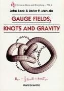 Gauge Fields, Knots and Gravity (World Scientific Series on Nonlinear Science)