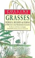Grasses, Sedges, Rushes and Fern of Britain & Northern Europe