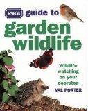 RSPCA Guide to Garden Wildlife