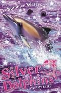 Stormy Skies (Silver Dolphins)