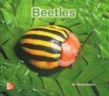 Beetles [Big Book]