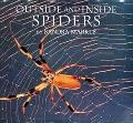 Outside and inside Spiders - Sandra Markle